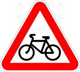 Пересечение с велосипедной дорожкой 1.24